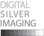 DSI-logo-stacked